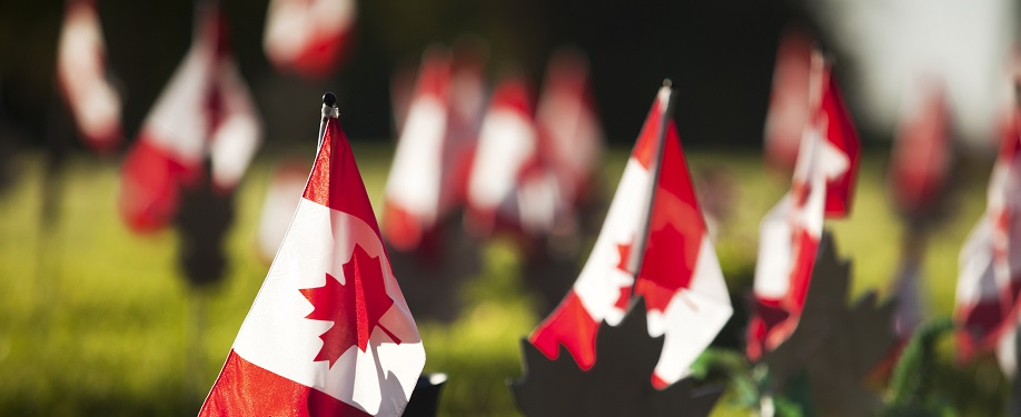 Canada honors the dead at a military cemetary